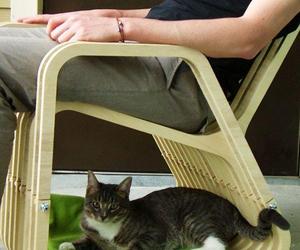 Кресло-качалка для людей и животных