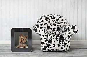 Симпатичные домики для домашних животных